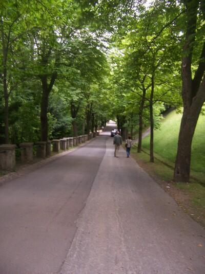 Part of the scenic walk down from the top of the Schlossberg