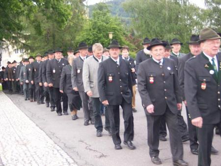 The Veterans Associations of Austria parade by