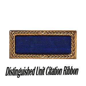 Distinguished Unit Citation with Oak Leaf Cluster - 301st BG, Army Air Corps Library and Museum
